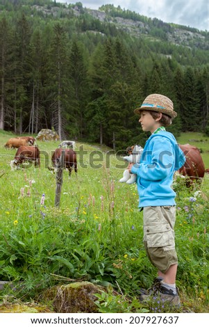 the little boy looks at cow in the mountains  - stock photo