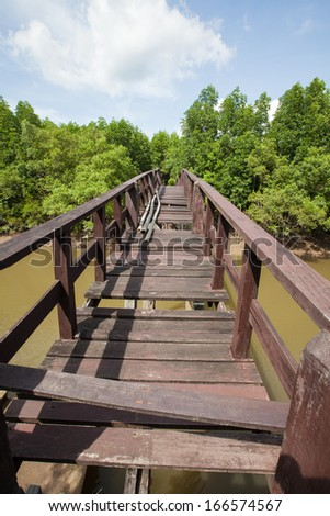 The long bridge is broken with the mangrove forest around river side , Ranong, Thailand. - stock photo