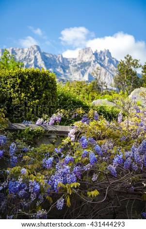 The magnificent view to Ai-Petri mountain, Crimea - stock photo