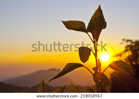The majestic Himalayas at the sunrise time, Nepal  - stock photo