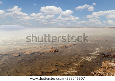 The medical mud on the shore of the Dead Sea, Jordan - stock photo