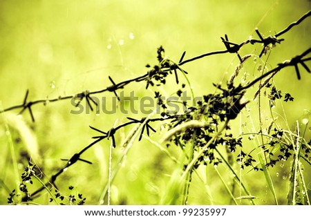 the metal wire on green background - stock photo