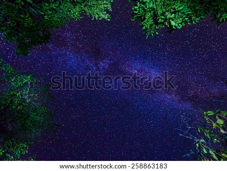 The Milky Way galaxy on night starry sky with trees crown - stock photo