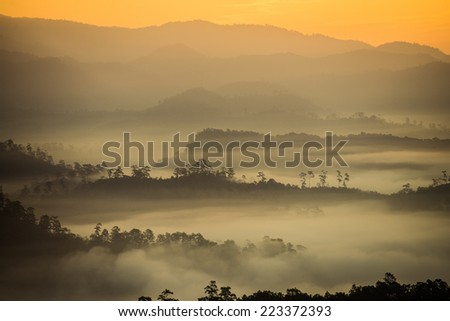 The mist in the morning - stock photo