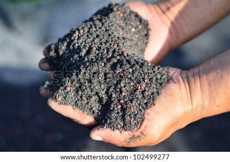 The mix of chemical fertilizer and manure on farmer hands. - stock photo