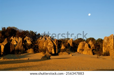 The moon rises over pinnacles, Namung National Park, Western Australia - stock photo