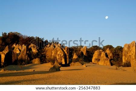 The moon rises over pinnacles, Namung National Park, Western Australia - stock photo