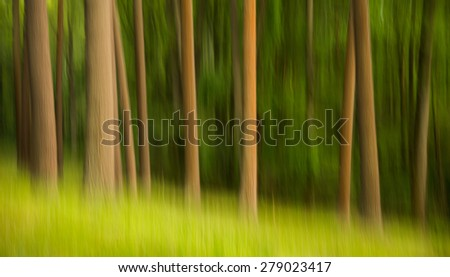 The motion of the camera during a long exposure shows the movement of the trees in a springtime forest. - stock photo