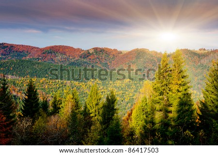 the mountain autumn landscape with colorful forest - stock photo