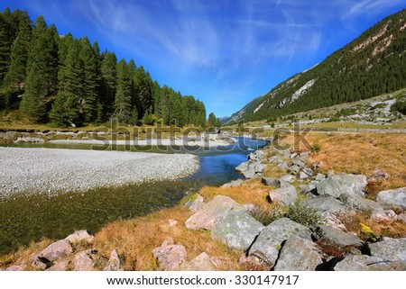 The narrow stream flows between fields and pine forests. Autumn creek shallow. Austrian Alps - stock photo