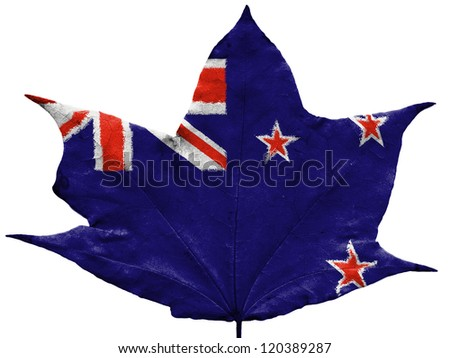 The New Zealand flag painted on  dried autumn leaf - stock photo
