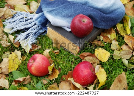 The old book and apples among autumn foliage - stock photo