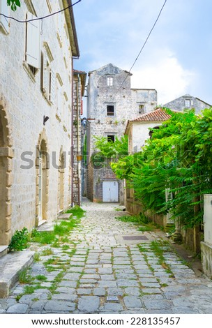 The old streets of Perast boasts the lush green gardens and interesting stone houses, Montenegro. - stock photo
