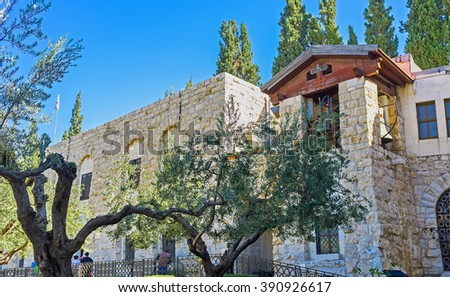 The olive trees of Gethsemane Garden with the belfry of the Church of All Nations on the background, Jerusalem, Israel. - stock photo
