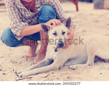 The owner hugging her dog on the beach - stock photo