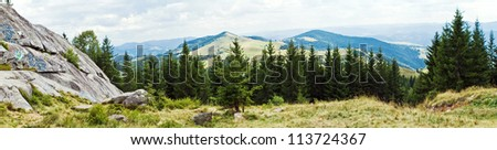the Panorama with mountains and forest - stock photo
