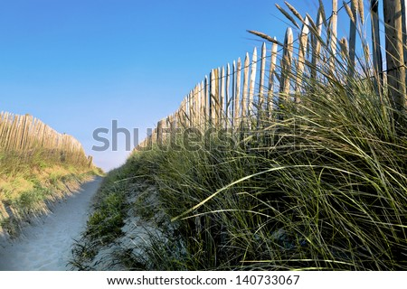 The passage between the dunes. Access to the sea. - stock photo