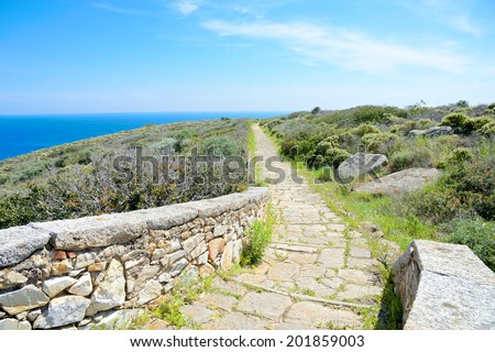 The Path, Giglio Island, Italy - stock photo