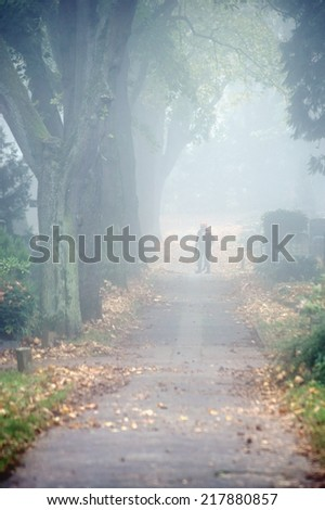 The photograph of a tree-lined boulevard and sidewalk in the fall with a worker who blows leaves away / Leaf blower                 - stock photo