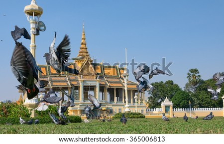 The pigeons in the square in front of the Royal Palace in Phnom Penh the capital of Cambodia - stock photo