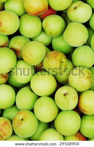 the plums - stock photo