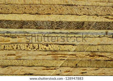 The plywood texture after sawing by saw background - stock photo