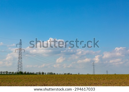 The powerlines on the young corn field - stock photo