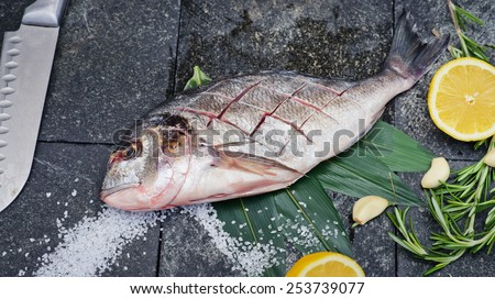 the process of making fresh raw fish dorado on a kitchen cutting board with lemon, herbs, sea salt and a knife - stock photo