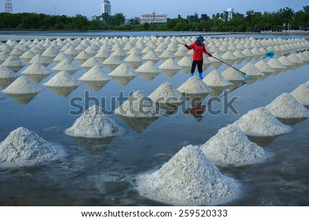 The production of salt in the field. - stock photo