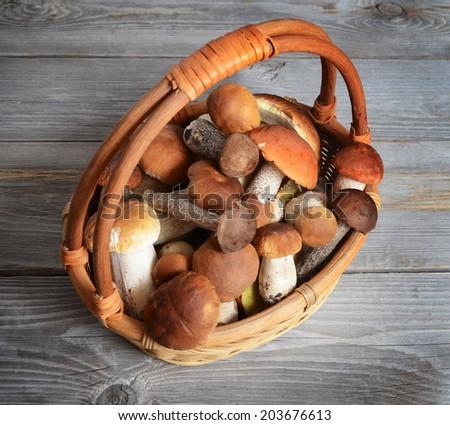 The raw boletus edulis as a background - stock photo