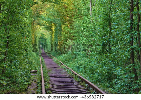 The real natural wonder - love tunnel created from trees along the railway in Ukraine, Klevan. - stock photo
