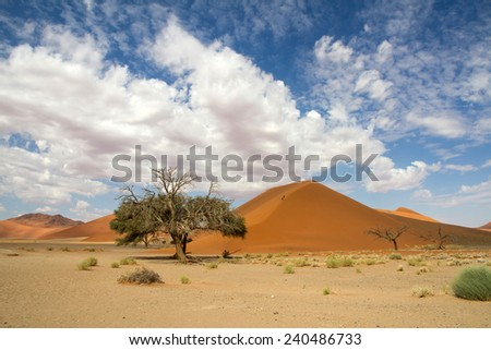 The red sand dune 45 of Sossusvlei, Namibia - stock photo