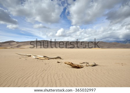 The remains of a tee lie partially buried by the desert sands near Sand Dunes National Park in southern Colorado.  - stock photo