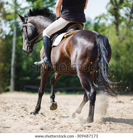 The rider on the horse jumping over obstacles in the arena - stock photo