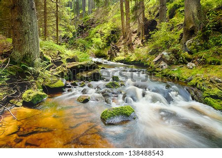 The river runs over boulders in the primeval forest - HDR - stock photo