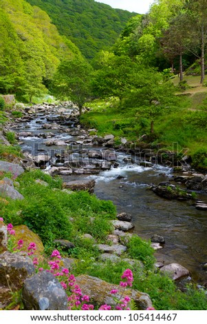 The riverside between Lynmouth and Watersmeet in Devon.  This is a beautiful 1 3/4 mile walk along the River Lyn and one of the best in Devon - stock photo