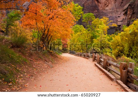 The Riverside Trail leading to the Narrows in Zion Canyon National Park, Utah. - stock photo