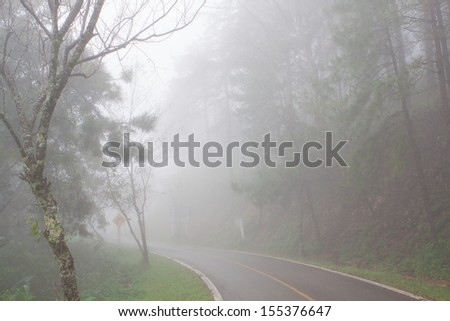 the road in the fog - stock photo