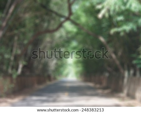 The road is a tree tunnel blurred background - stock photo