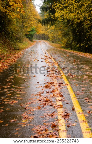 The road looks slippery in the poring rain Oregon Highway - stock photo