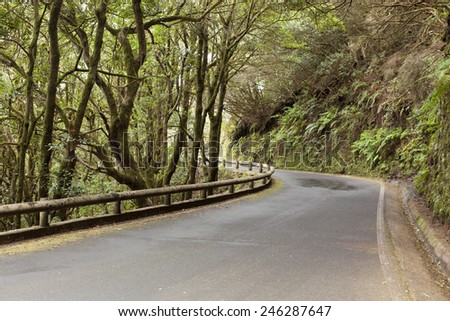 The road on  Tenerife island, Canary islands, Spain  - stock photo