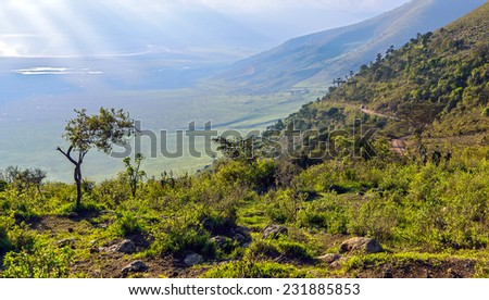 The road to the bottom of the Crater Ngorongoro - Tanzania, Eastern Africa - stock photo