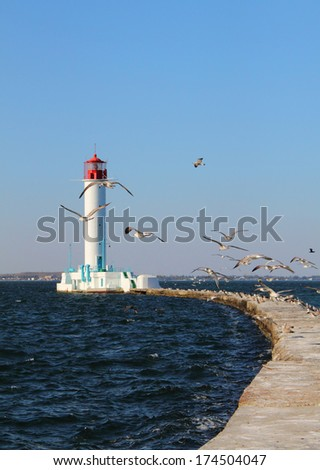 the road to the lighthouse and seagulls - stock photo