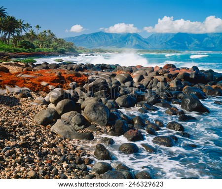 The rocky and colorful shore lines the ocean with trees and lush foliage in  Hawaii, Hawaiian Islands, USA. - stock photo