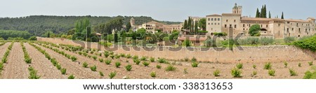 The Royal Abbey of Santa Maria de Poblet is a Cisterian monastery founded in 1151 in Catalonia. The monks from Poblet always work the vineyards. - stock photo