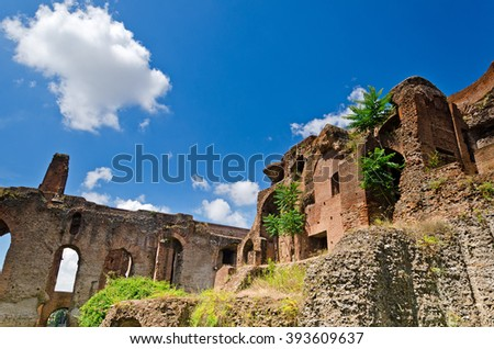 The ruins on the Palatine hill during summertime in Rome, Italy - stock photo