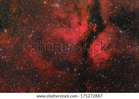 The Sadr region, or IC 1318, is the diffuse emission nebula surrounding Sadr or Gamma Cygni. Sadr lies in the center of Cygnus's cross. - stock photo