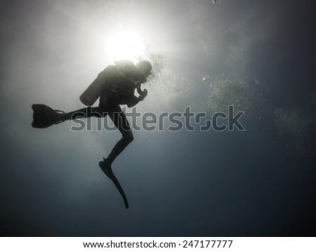 The Scuba Diver Silhouette - stock photo