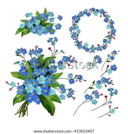 The set of Forget me not flowers. Spring  illustration. Isolated on white. Spring flowers. Flower.   - stock photo