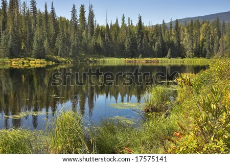 The silent mountain lake surrounded by fur-trees and bushes in the autumn. - stock photo